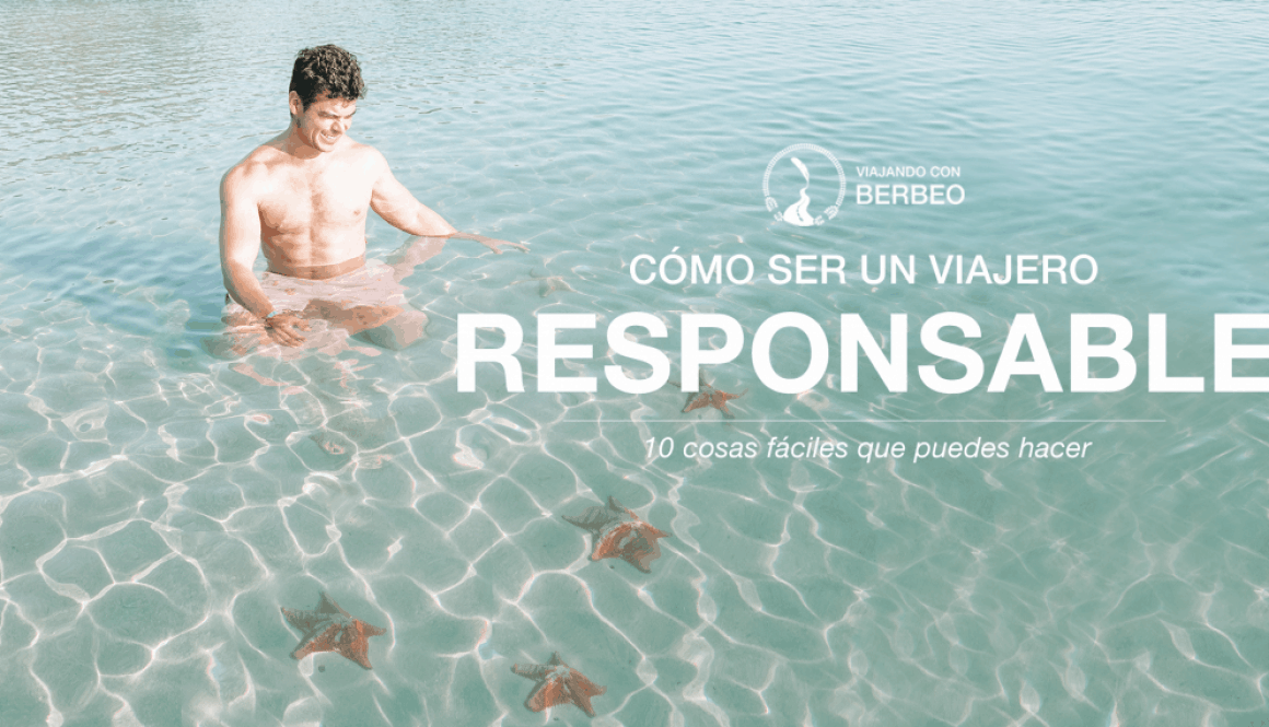 Viajero responsable - cover