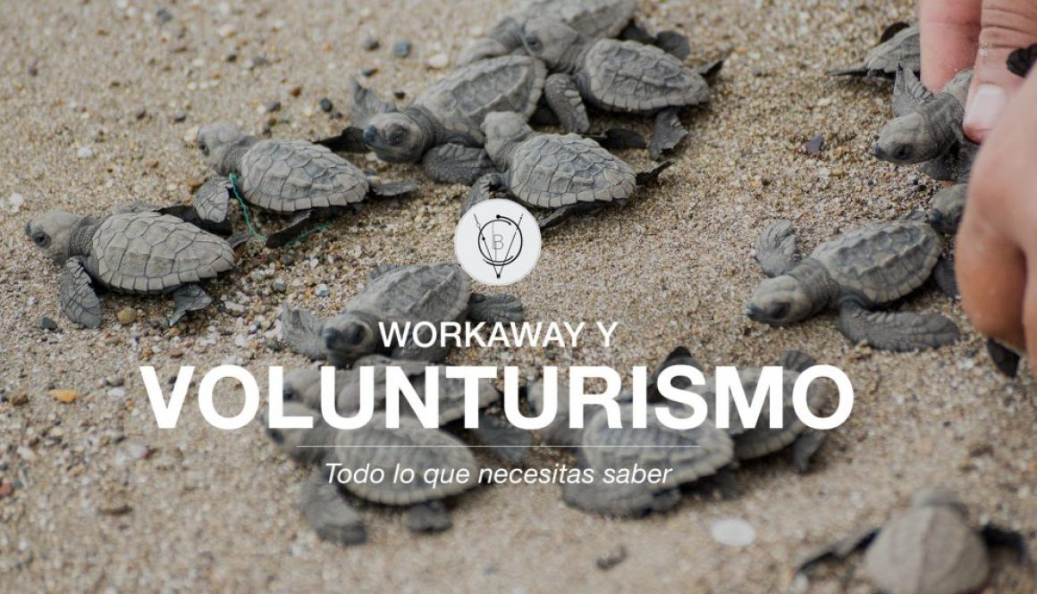 COVER -Volunturismo